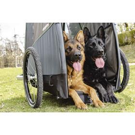 Croozer Dog Bruuno Remorque pour chien, pine green